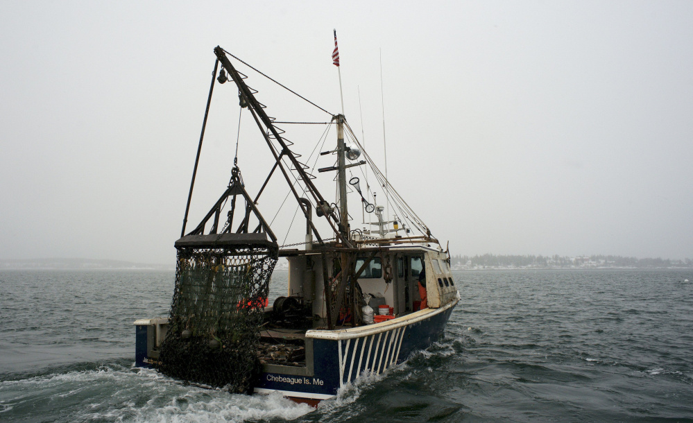 The scallop dragger Jacob and Joshua sails in Casco Bay. The federal government plans to allow fishermen to catch more scallops next year as demand for the shellfish has grown.
