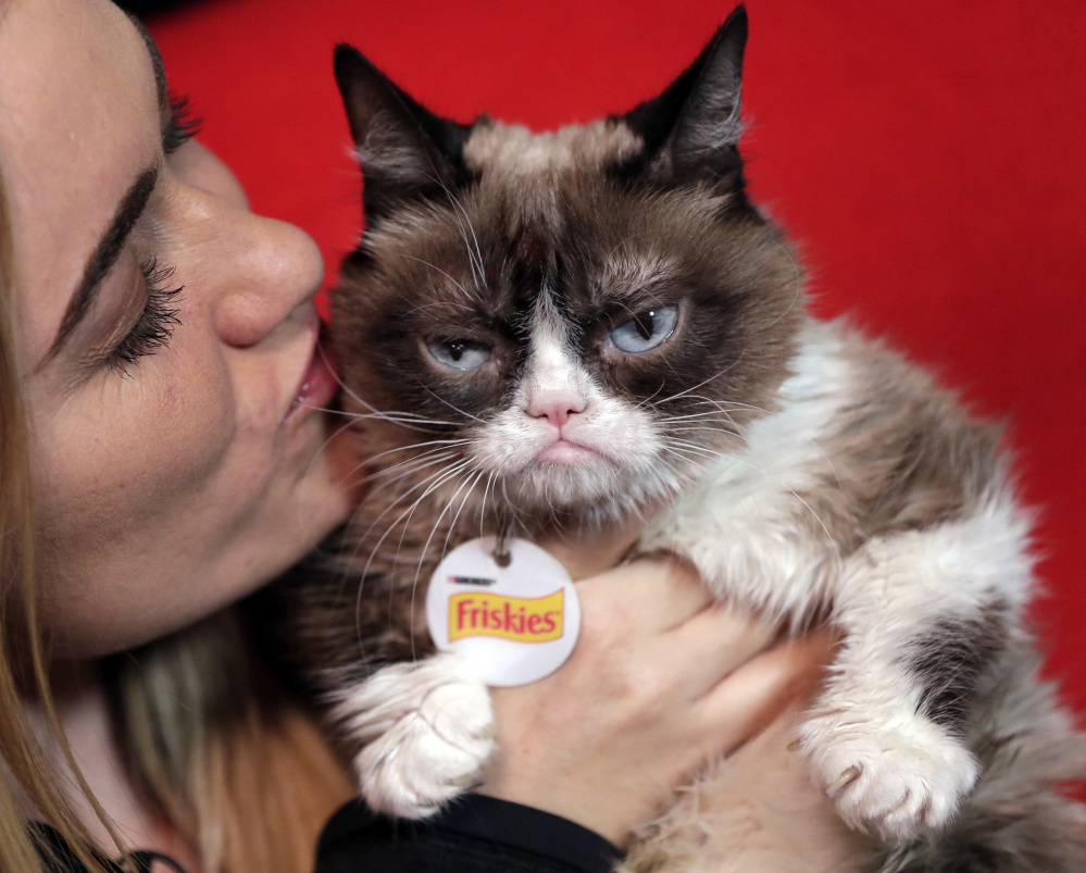 Grumpy Cat with owner Tabatha Bundesen in New York. The social media star posted her Top 10 pet peeves on her new blog.
