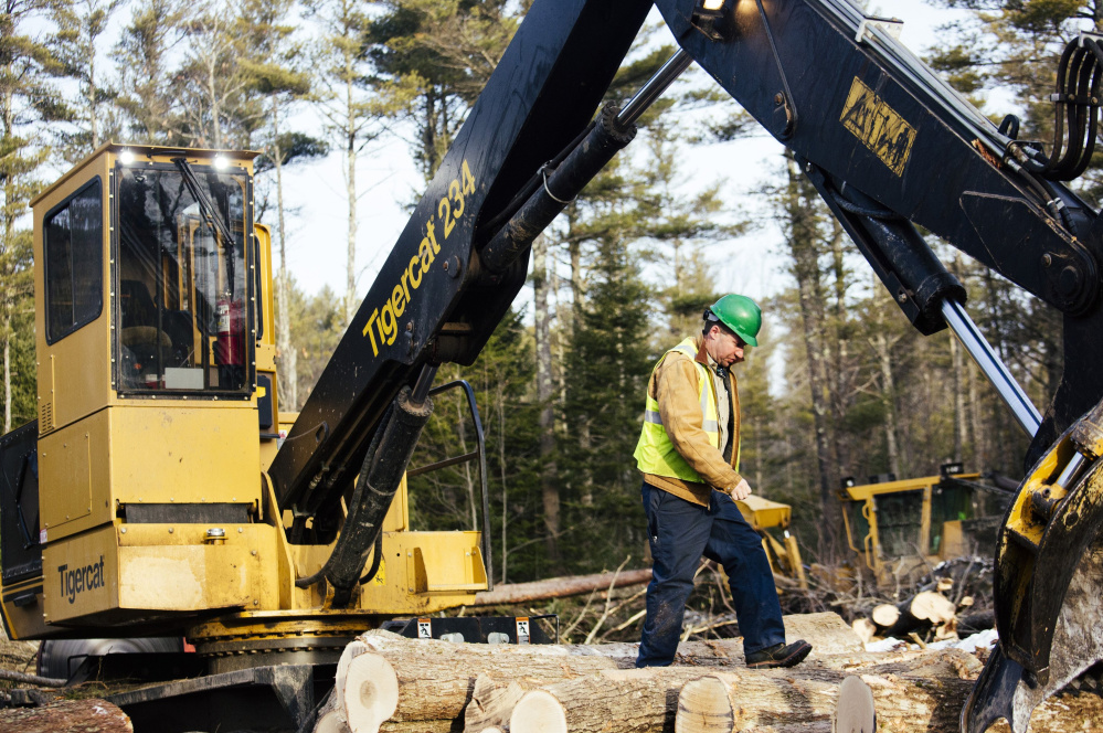 Tom Cushman, owner of Maine Custom Woodlands in Durham, walks along stacked logs after feeding wood into a chipper to be sent as biomass fuel to ReEnergy in Brunswick.