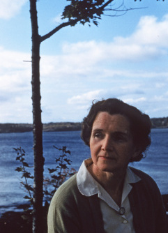 Disparaged by media, business and public officials, scientist and writer Rachel Carson deployed facts, understanding and calmness.