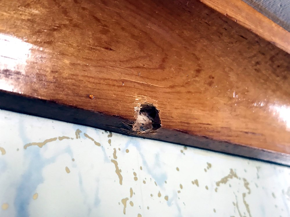 A bullet hole seen Friday in the kitchen crown molding in Audrey Hewitt's Sidney home shows evidence of her son's March 11 struggle with an intruder.