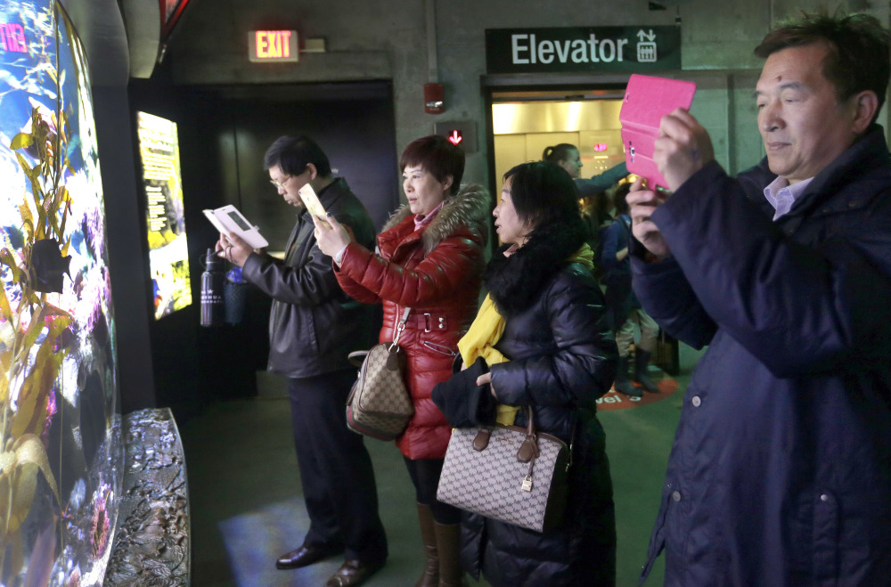Tourists from China take pictures at the New England Aquarium in Boston. In cities across the country, the American hospitality industry is stepping up efforts to make Chinese visitors feel more welcome.