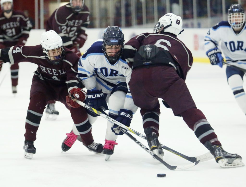 Ben Kennedy, right, and Colby Robinson of Greely defend against Dalton McCann of York in the first period Class B South regional hockey final at the Colisee in Lewiston. (Derek Davis/Staff Photographer)
