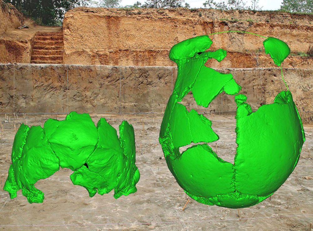 Digital reconstructions of the skulls superimposed over the site where they were found.