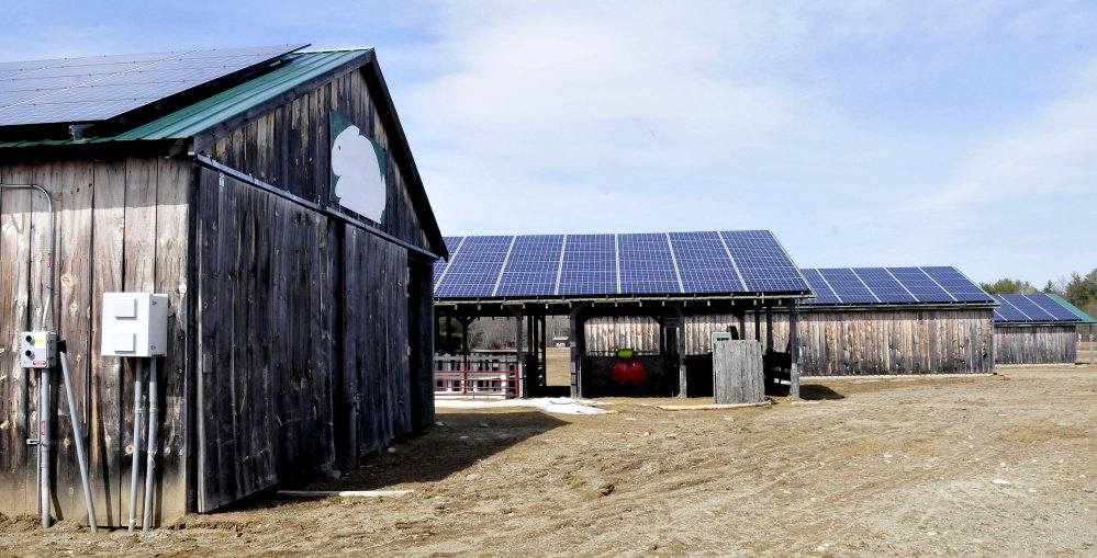 Four livestock barns are outfitted with solar panels that generate electricity for the Maine Organic Farmers and Gardeners Association in Unity on Monday. The association also uses heat pumps and wind turbines for alternative means of producing power.