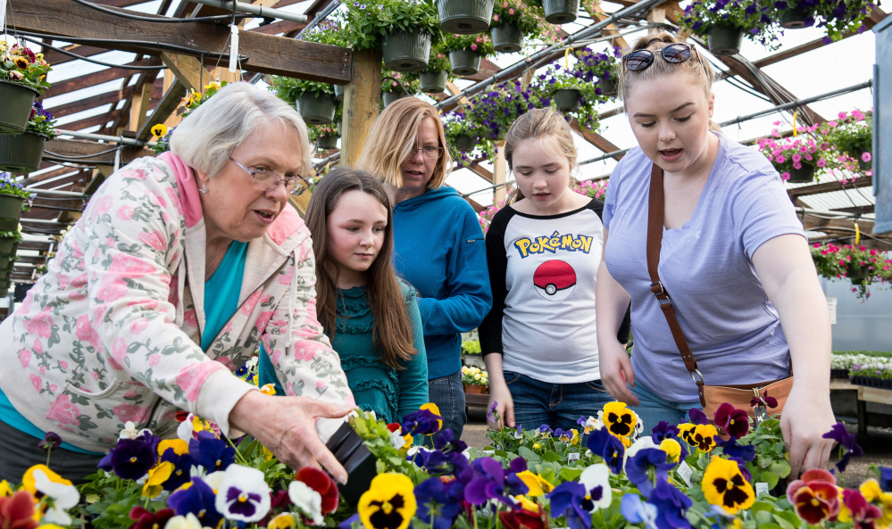 Carol Haskell, left, of Bryant Pond is joined Sunday by her daughter and grandchildren at Longfellow's Greenhouses. At right of her are Ella Akers, 10, of Andover; Crystal Rowley of Lisbon Falls; and her daughters Molly, 12, and Bridget, 16.