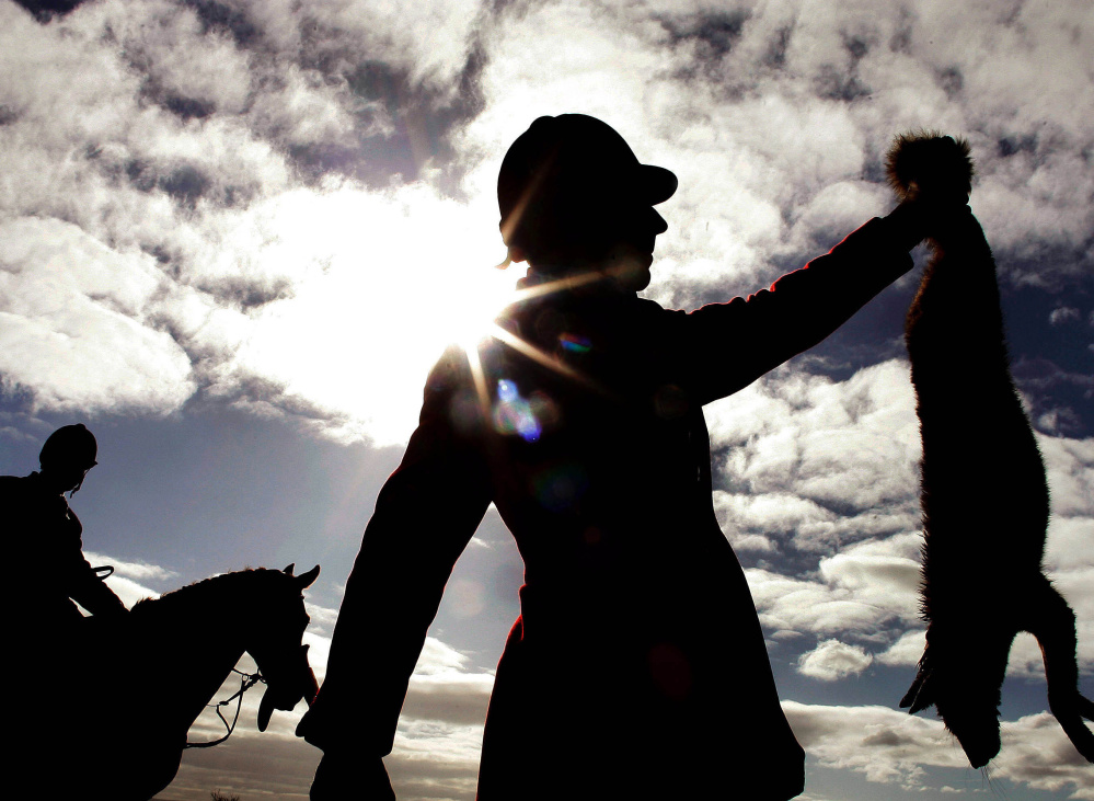 A huntsman from a South Durham hunt in northern England is silhouetted as he holds up a fox that was shot after being flushed out by hounds in 2005.
