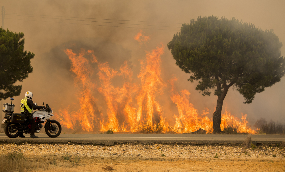 A military police officer watches a forest fire near Mazagon in southern Spain on Sunday. The fire started Saturday night and advanced to one of the nation's key wildlife sanctuaries.