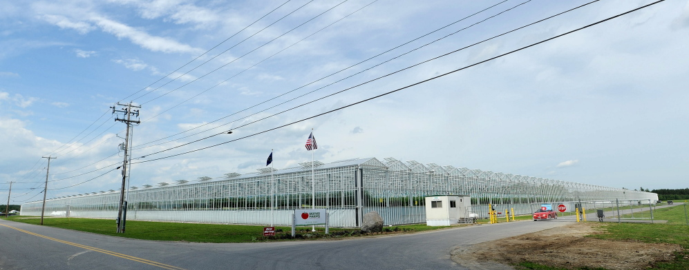Madison tomato grower Backyard Farms has been purchased by a Canadian produce company.