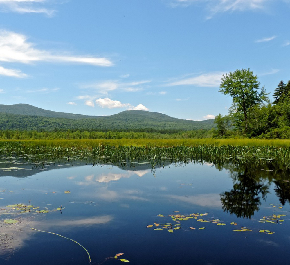 OK, so it's not officially in Maine, but of course we still like New Hampshire a lot, especially features like the glorious views of the mountains to the west from Upper Kimball Pond, just a half-mile from the New Hampshire border.