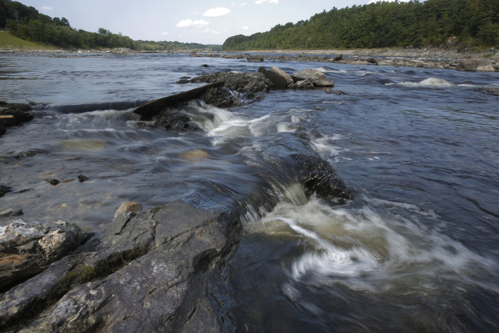 The Penobscot River flows free in 2015 where the Veazie Dam once stood. Authorities say that as river herring runs in Maine grow dramatically, with the Penobscot alone potentially supporting 10 million fish annually, the ecological effects could be profound as the fish is an excellent source of food for cod, eagles and other predators.