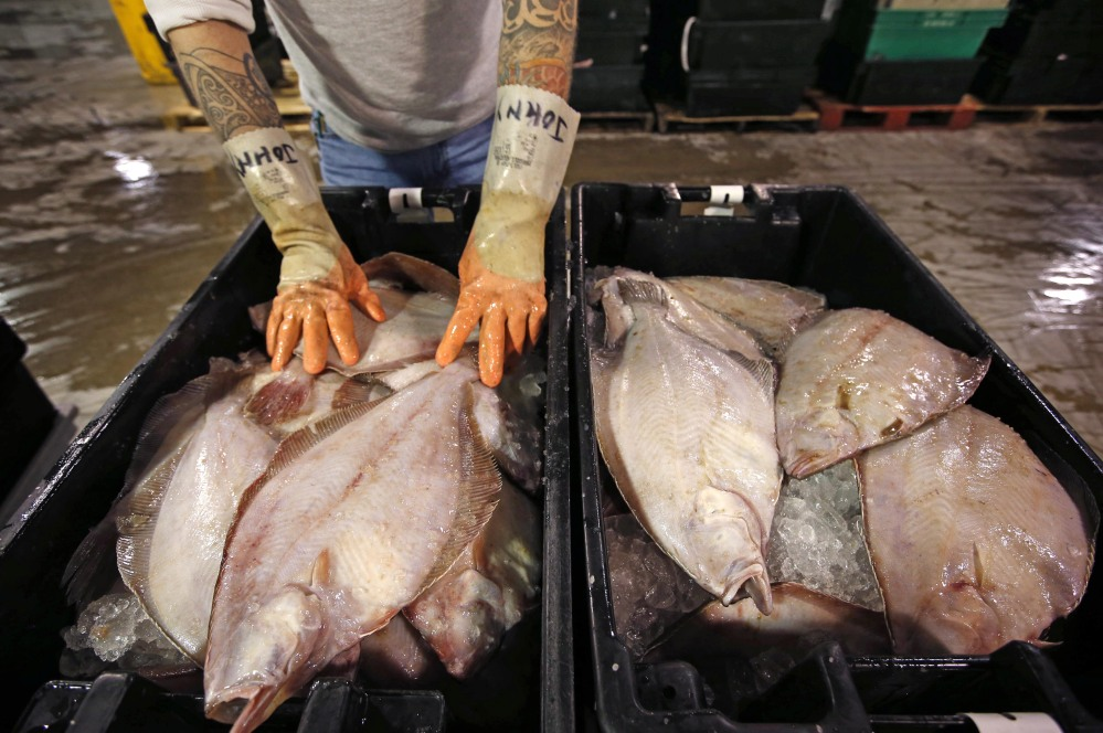 This crate is full of dab, a type of flounder. Another type of the fish, summer flounder, is popular with recreational anglers because it puts up a fight and yields considerable meat, and sport fishermen seek it in places such as Delaware Bay off New Jersey.