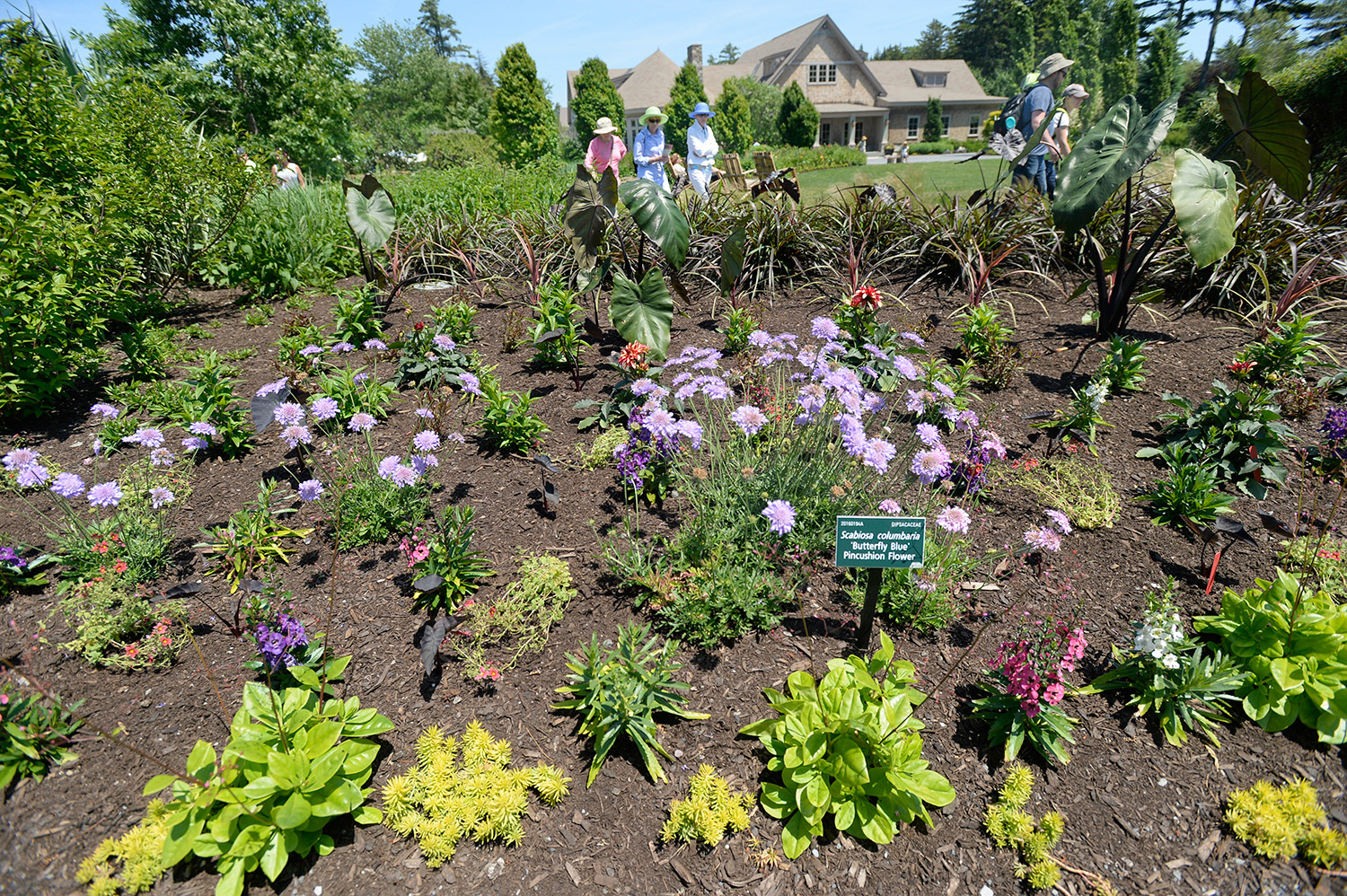 Visitors Look Over The Gardens Thursday At The Coastal Maine Botanical  Gardens In Boothbay. The Organization Was Cited By The Maine Department Of  ...
