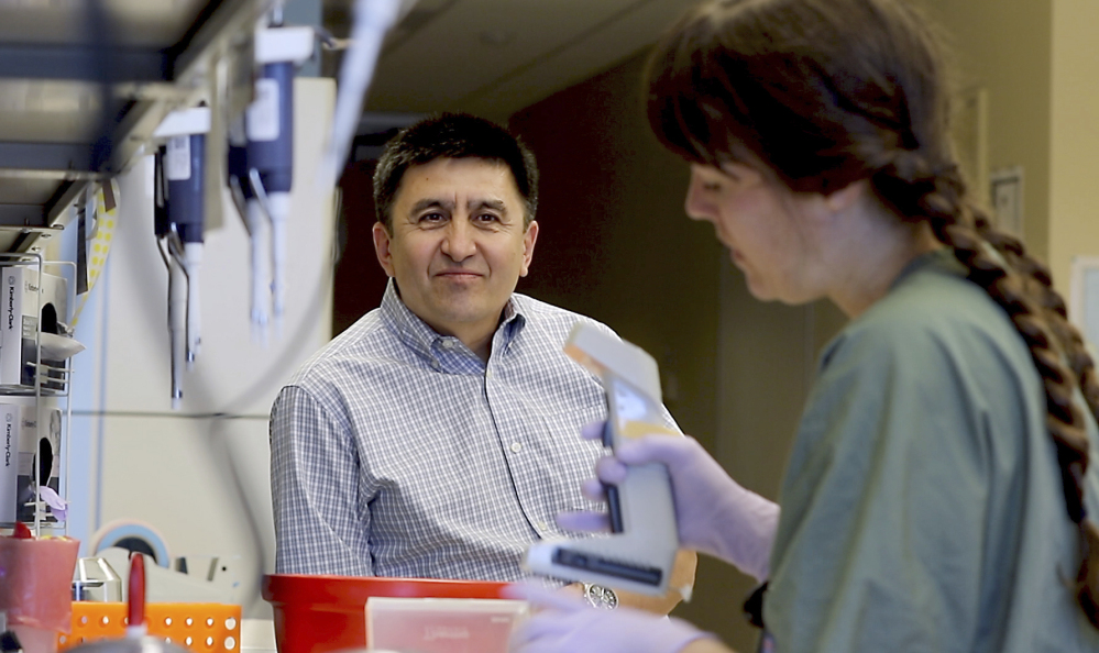 Shoukhrat Mitalipov, who led the team that edited genes to repair a disease-causing mutation in human embryos, confers with research assistant Hayley Darby at Oregon Health & Science University last month. The laboratory experiments might one day help prevent inherited diseases from being passed to future generations.
