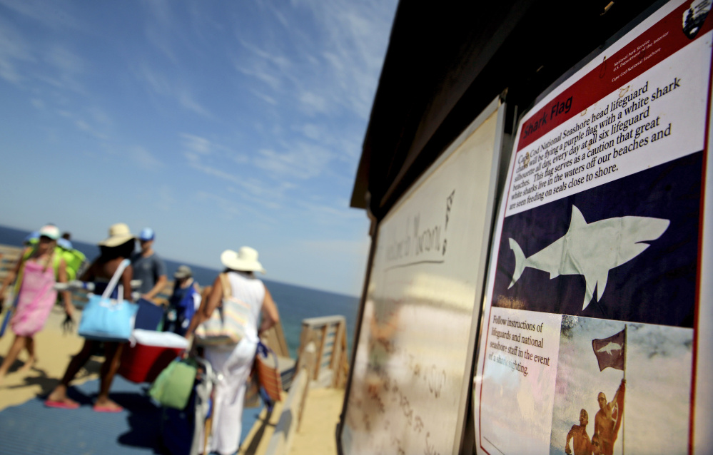 A shark advisory is posted at Marconi Beach in Wellfleet, Mass. The beach was temporarily closed to swimmers after a shark bit into a paddleboard on Wednesday.