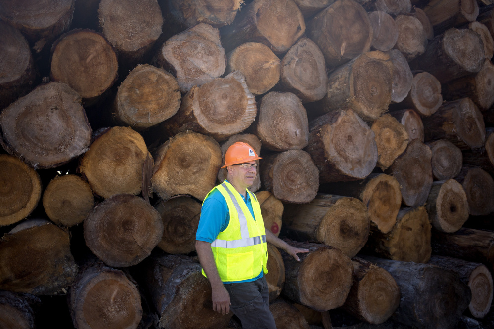 "Brian Souers is the president of family-run Treeline Inc. in Lincoln. ""It's disappointing at this point that many efforts to revitalize biomass markets in Maine have not borne fruit,"" he says. ""But we're optimistic and hopeful that something good will happen. We just don't know what it will be."""