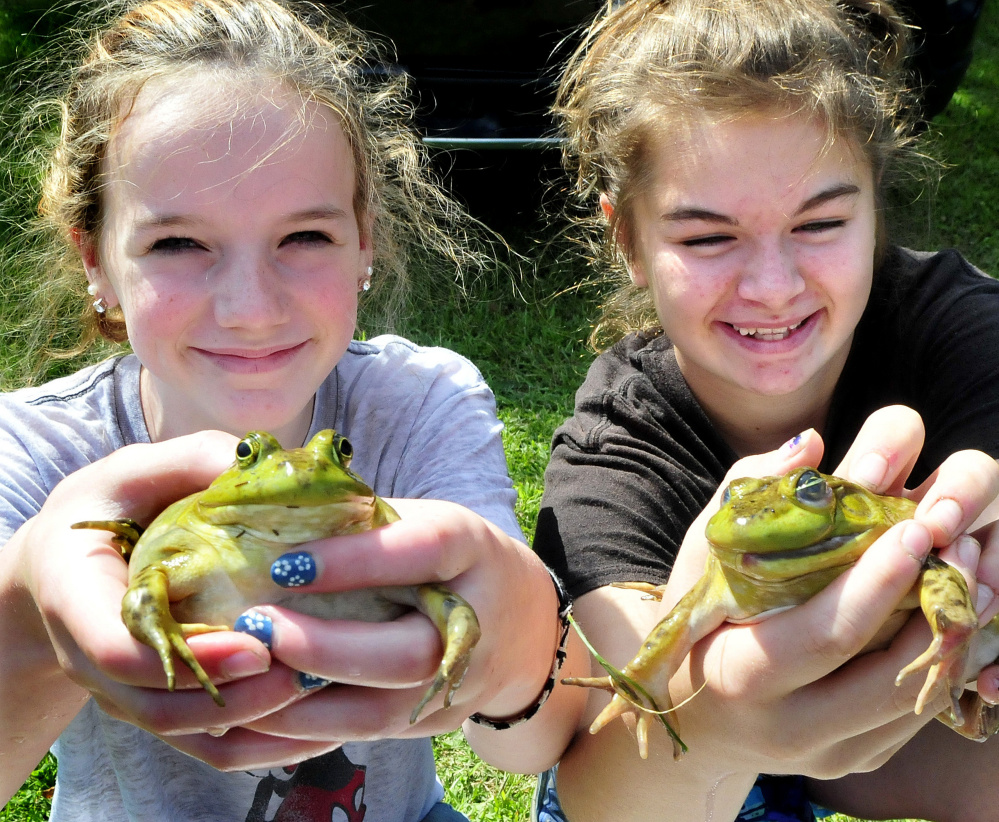 Frog-jumping contest entrepreneurs Kaitlyn Johndro, left, and Lindsey Obert were selling bullfrogs to kids Monday during the Oosoola Days event in Norridgewock.