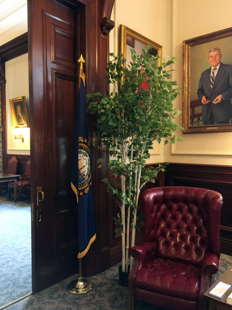 Photo provided by Judy Reardon shows a potted tree blocking Gov. Jeanne Shaheen's portrait outside the governor's office in Concord.