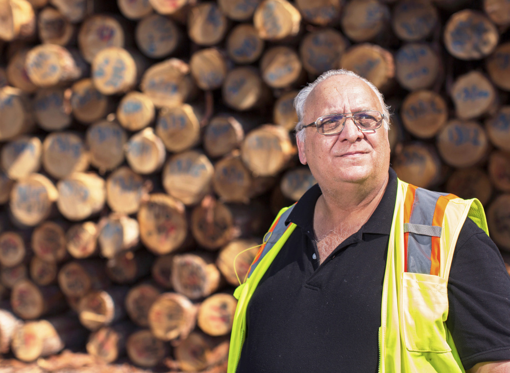 Arthur House, president of Searsport-based Maine Woods Biomass Exports, is shipping surplus softwood out of the former Verso Paper mill in Bucksport.