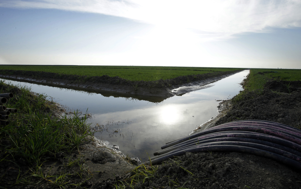Water flows through an irrigation canal to crops near Lemoore, Calif. The U.S. Interior Department is not supporting the plan to build two 35-mile-long tunnels to divert part of the state's largest river, the Sacramento, to supply water to central and Southern California.