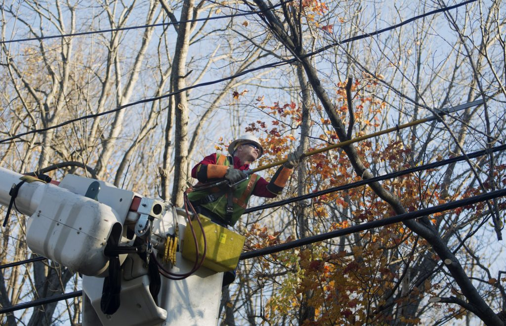 CMP lineman Mike Ross cuts a large tree branch down from a power line on Mitchell Road in South Portland on Oct. 31. A damaging late-October windstorm knocked out power to nearly a half-million CMP customers.