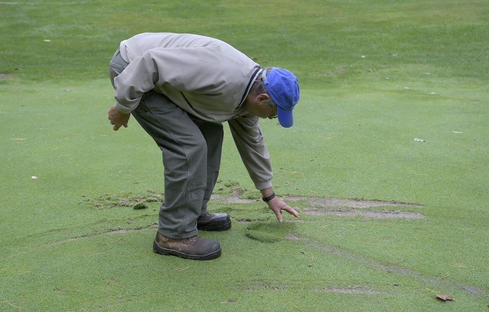 Bill Sylvester examines a piece of the second green damaged at Cobbossee Colony Golf Course in Monmouth on Oct. 9. The Sylvester family discovered Monday that several parts of their course were vandalized by golf carts overnight.