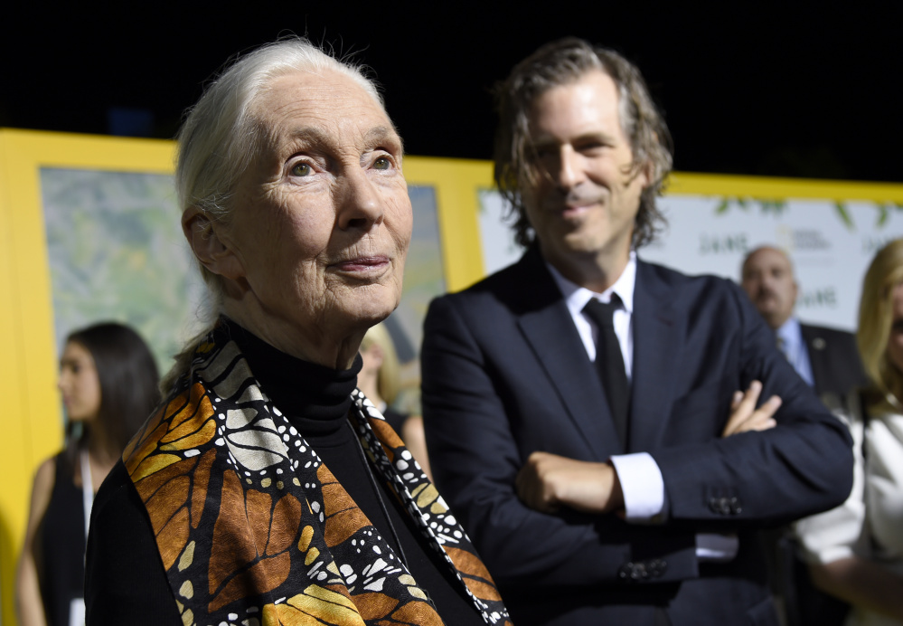 """Jane Goodall with director Brett Morgen at the Los Angeles premiere of """"Jane"""" last month."""