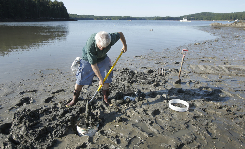 Maine has abdicated responsibility for monitoring and researching ocean acidification to volunteers like marine biologist Mick Devin, seen above in 2015, while Washington state, with a shellfish industry that has less than half of the value of Maine's, is spending $6 million to study it.