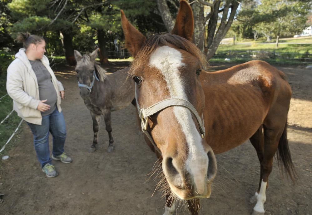 Kelsey Radley, the owner Zin the horse, right, and Pocket the mule, in October. A judge ruling to keep the horses in state custody said they had not been adequately cared for.
