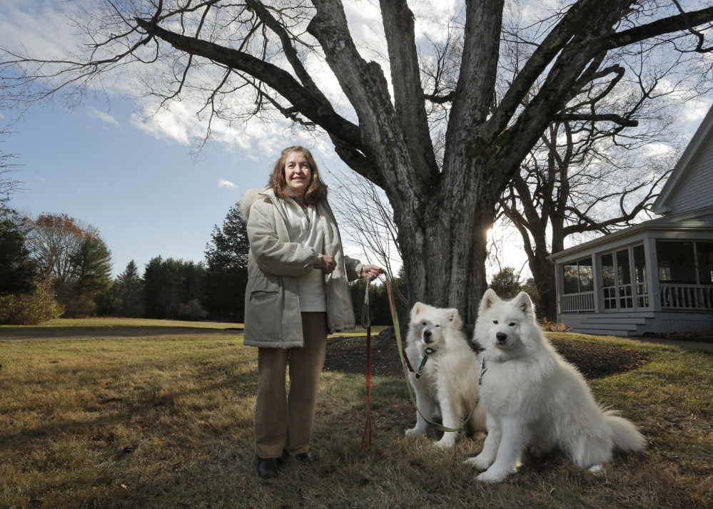 Joanne Fryer with her dogs Pippin and Puff at her home in Cumberland. Fryer is an attorney who also operates a flower farm on her property and has led an effort to get approval from the town to allow farms to host weddings and other functions.