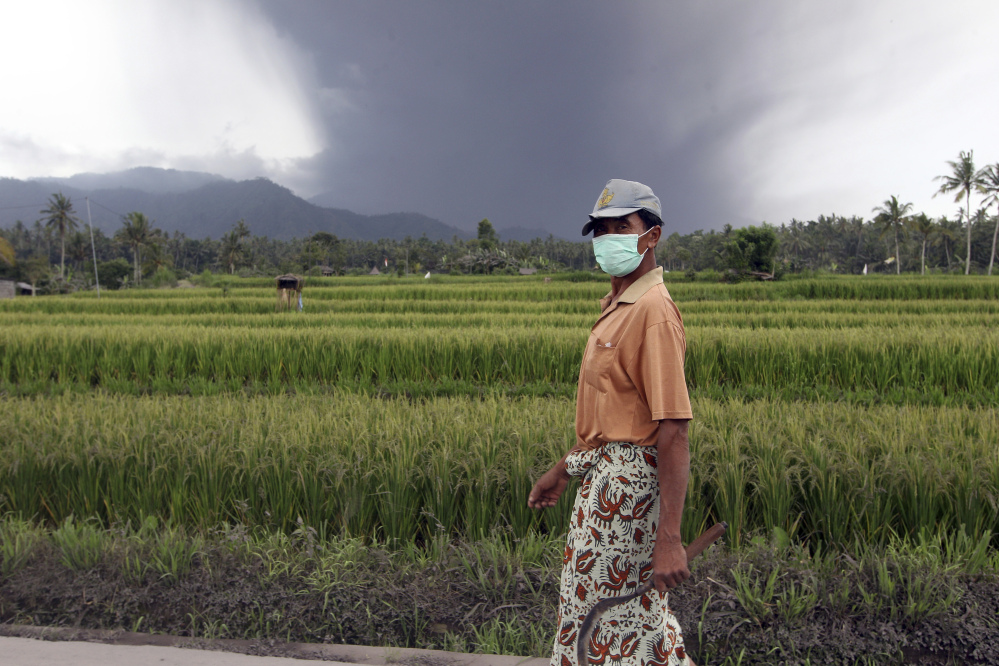 A villager walks near a rice field on the island of Bali, following the eruption of Mount Agung, covered with clouds in the background, in Karangasem, Indonesia, on Sunday. The volcano has rumbled into life with a series of eruptions.