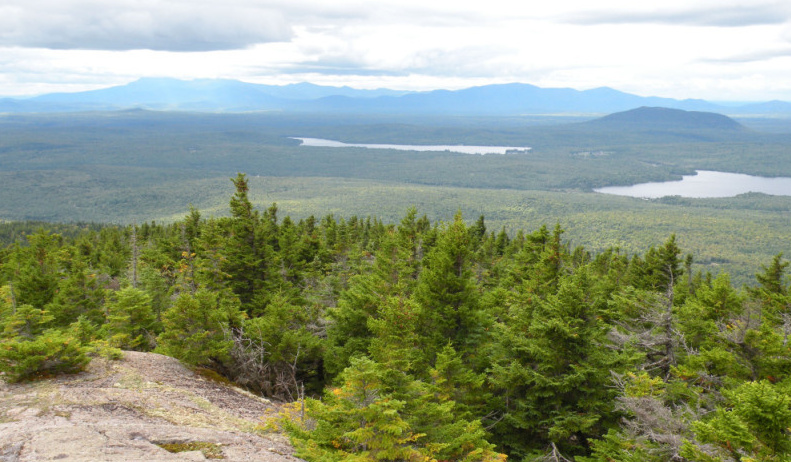 "The view from Mount Chase, near land purchased by Wolfden Resources Corp. Explorations in the 1970s revealed zinc, lead, copper and silver in what was dubbed the ""Mount Chase deposit,"" but no mining was attempted."