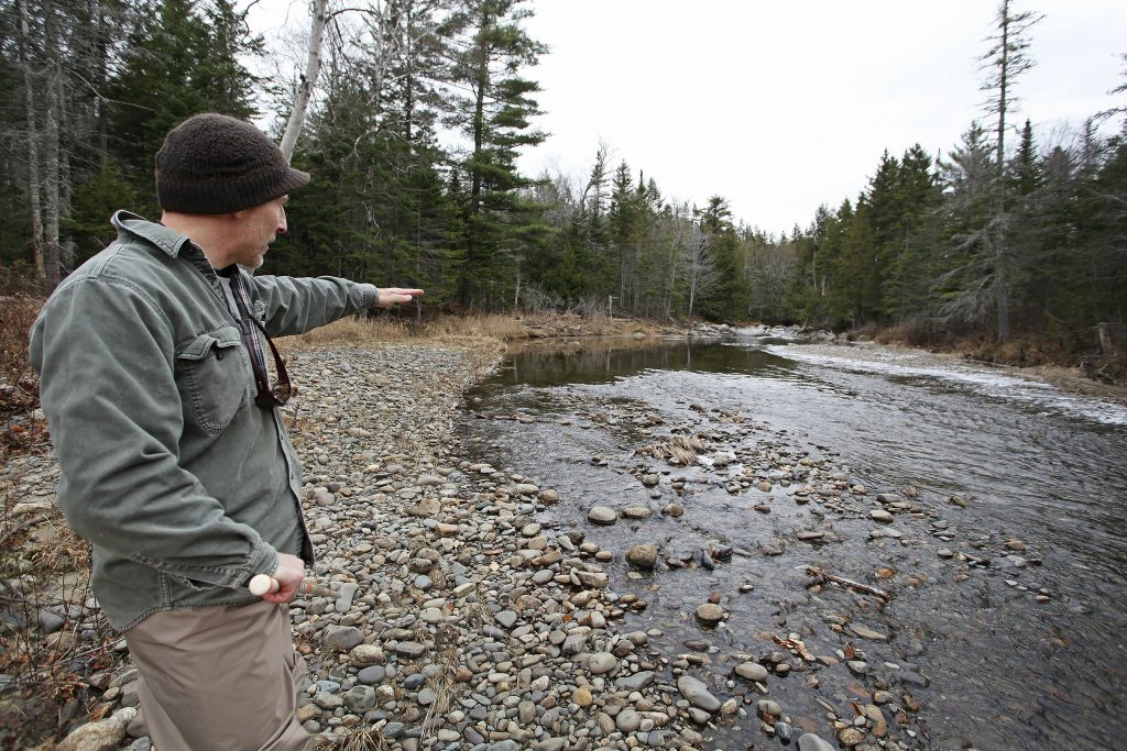 Jake Overlock, a biologist with the Maine Department of Marine Resources, describes an area of Orbeton Stream, where salmon redds have been located.