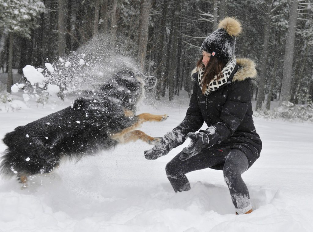 Hannah Clarke, home for Christmas from Cambridge, Massachusetts, plays in the fresh snow with her dog, Riggins, at her parents' home in Falmouth.
