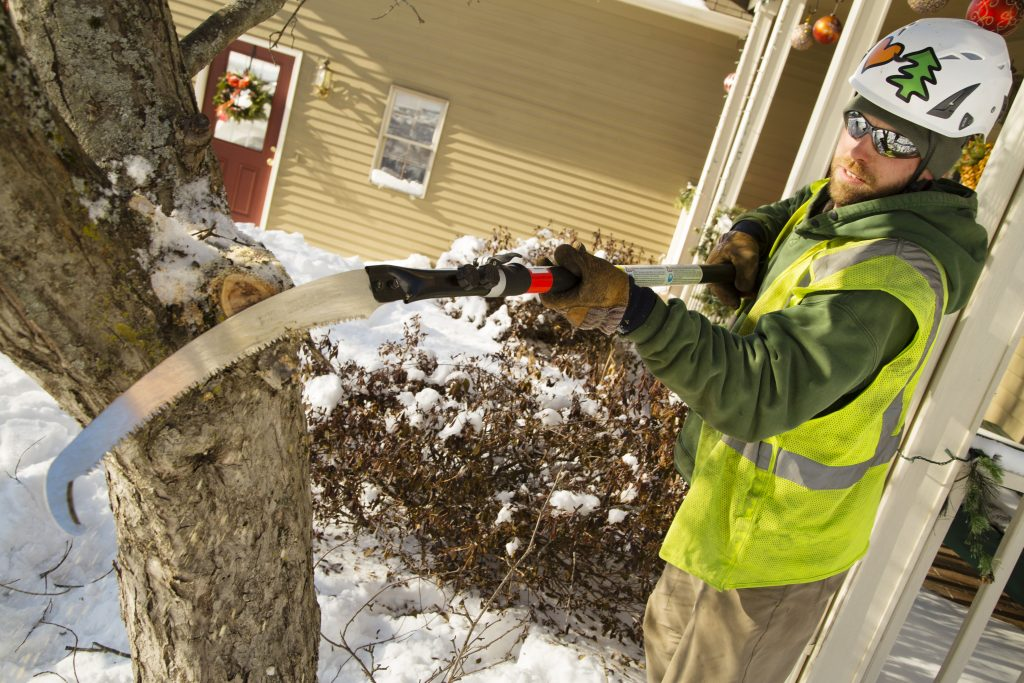 "Lucas Tree Experts' arborist Chris Everest trims a tree in Portland Wednesday when temperatures barely reached the teens. It was the beginning of a frigid stretch in Maine, but he and others who work outside said they are used to dealing with cold weather. ""Everybody is talking about how cold it is, then they go work their office job. I'd much rather be outside regardless of temperature,"" he said."