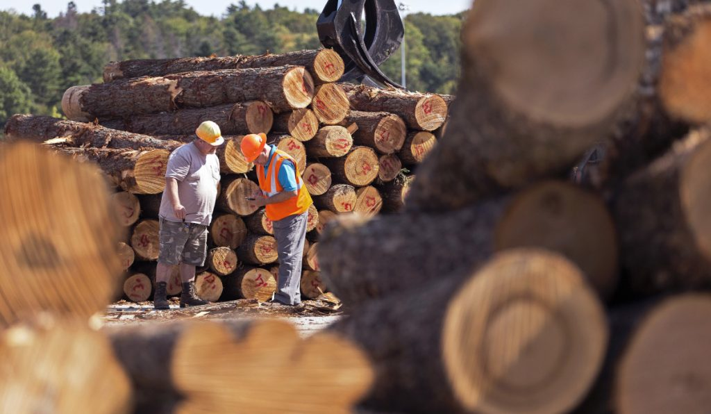 Scott King, left, a log scaler at Maine Biomass Exports, and Brian Souers, owner of log supply company Treeline, tally a delivery of logs at the former Verso Paper mill in Bucksport.
