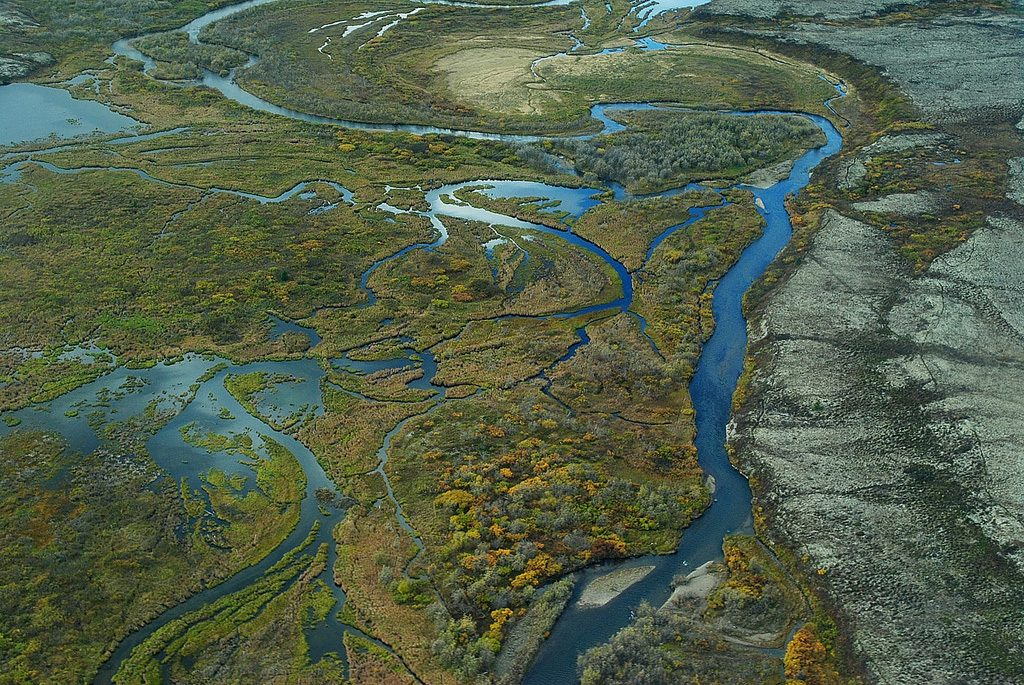 These braided wetlands and tundra in the Kvichak River watershed are typical of the Bristol Bay area.
