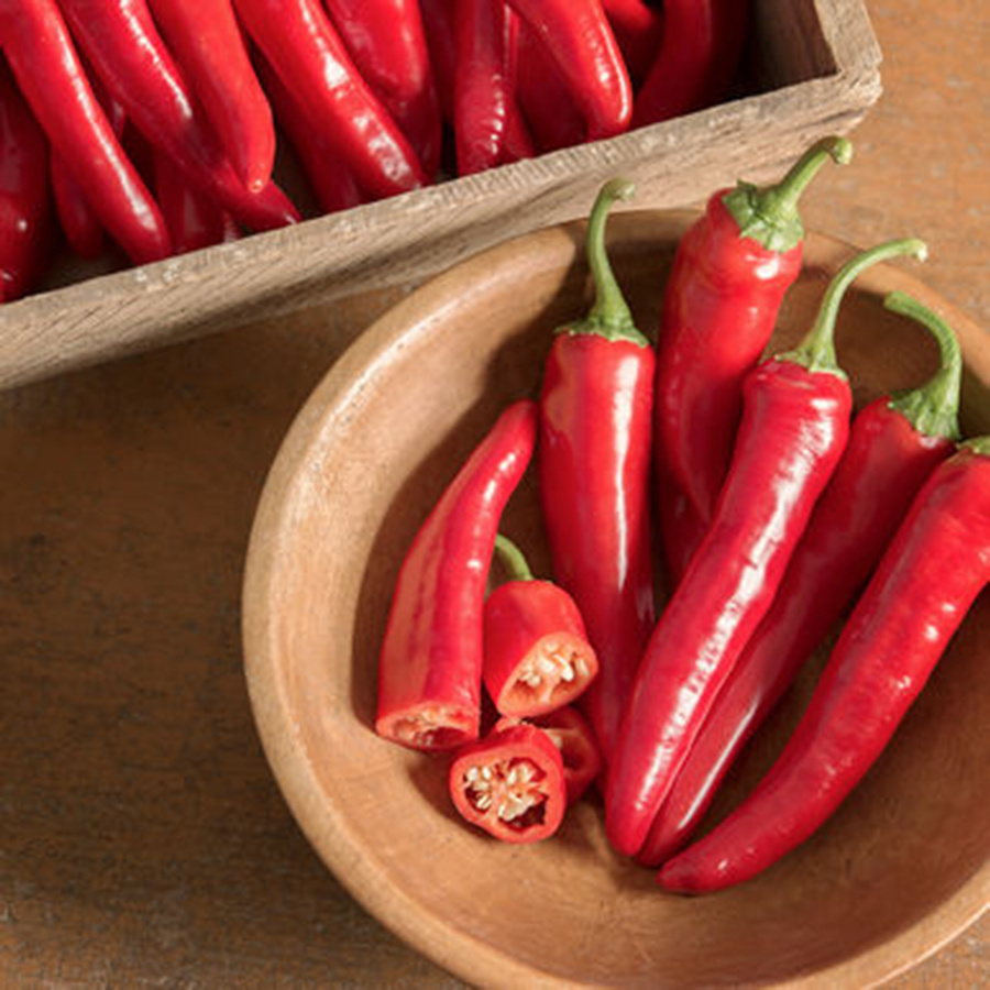 Red Ember cayenne peppers from Johnny's Selected Seeds of Winslow. A nonprofit praised Red Ember for its early maturity, and its production of a large number of thick-walled fruits that are both flavorful and sweet.