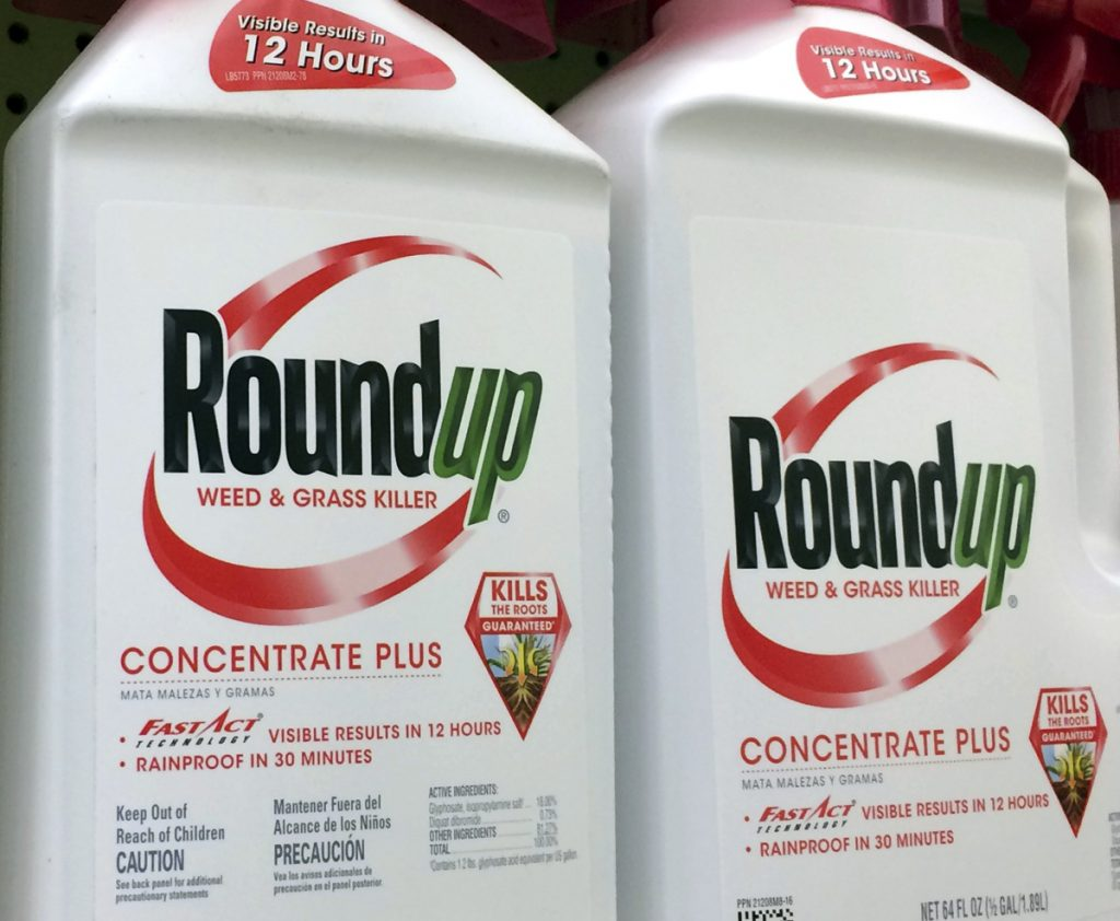 Monsanto's weed killer Roundup contains glyphosate, which some scientists say has been linked to cancer in humans.