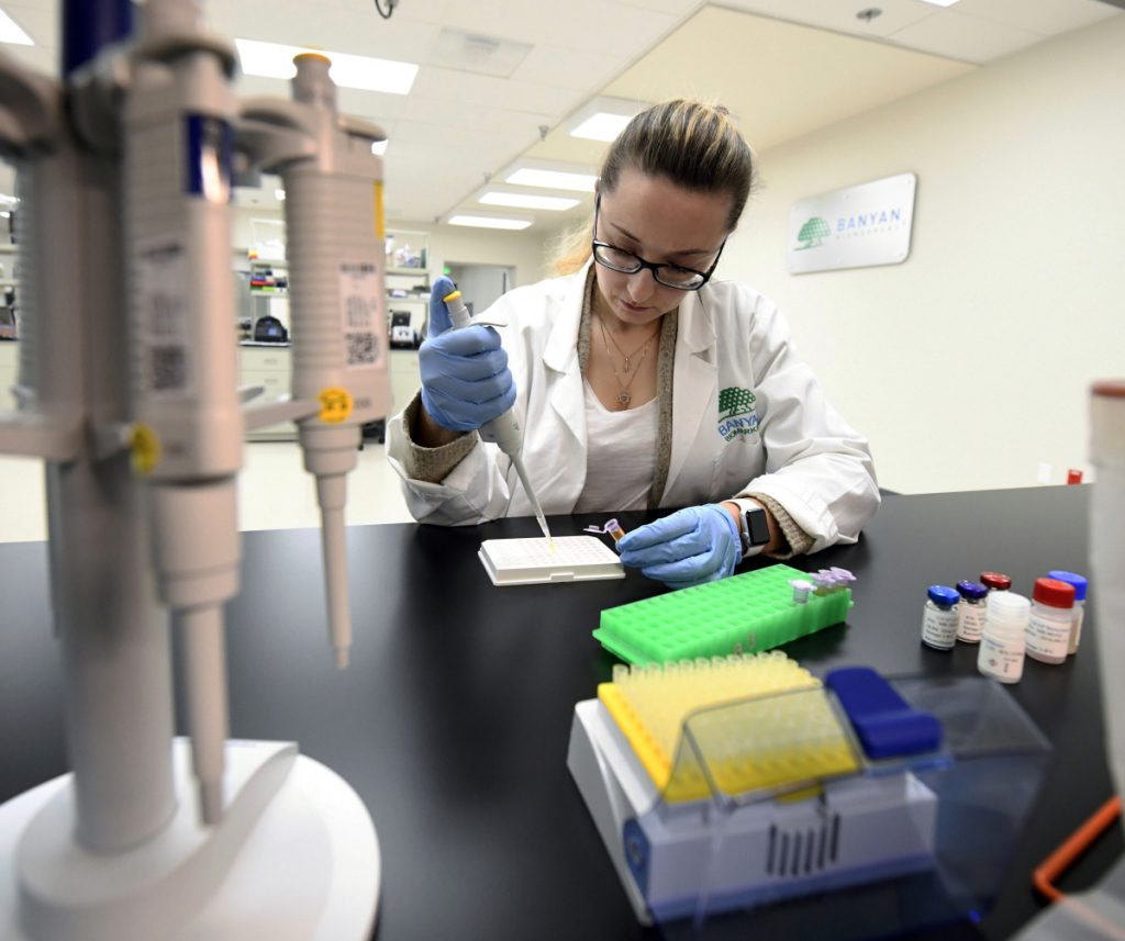 Product development scientist Veronika Shevchenko experiments Tuesday with patient samples at Banyan Biomarkers research facility in San Diego