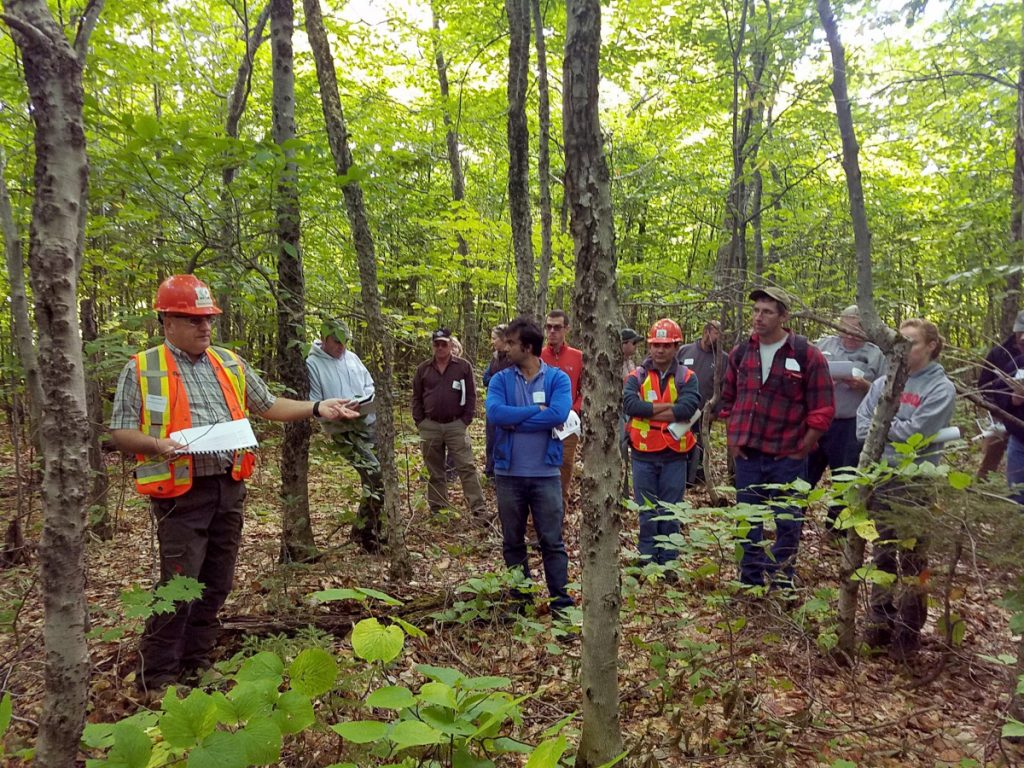 Gaetan Pelletier of the Northern Hardwoods Research Institute describes beech disease to members of the University of Maine Cooperative Forestry Research Unit in Aroostook County.
