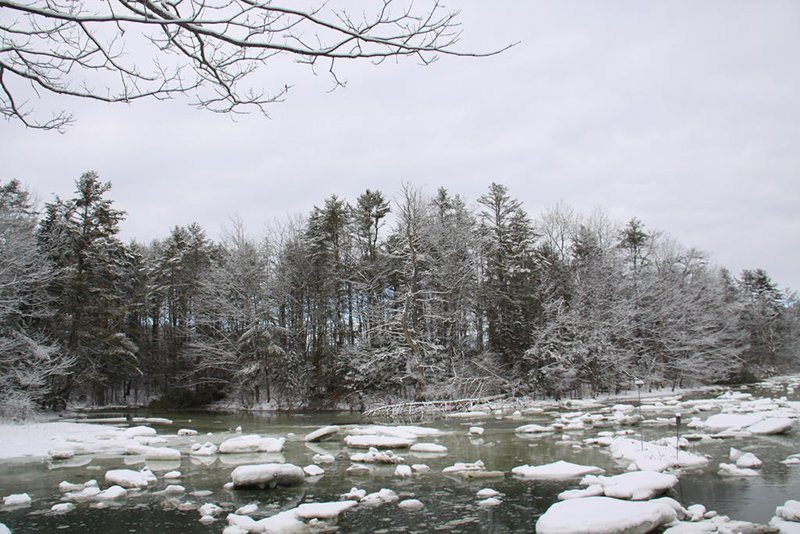 A buffer of trees on the bank of a Cousins River estuary and another line of trees at the northernmost edge of David DeLorme's 17-acre property are what now stand between Sisquisic Trail and Route 1 in Yarmouth.