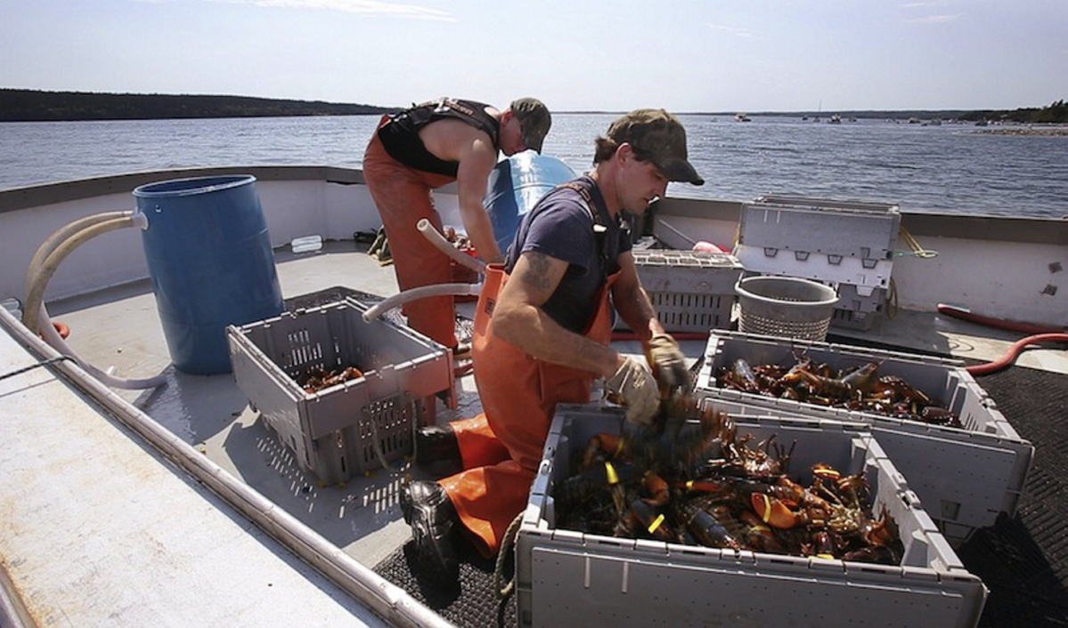Maine lobster industry fears retaliation if China seafood tariff is enacted