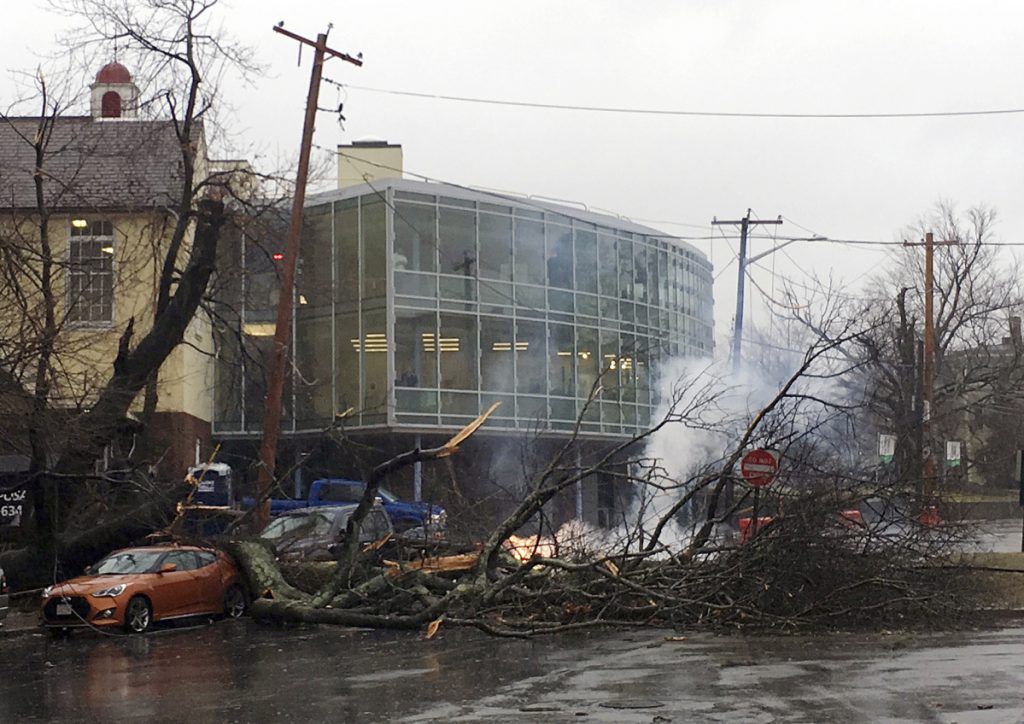 Power lines smolder behind a fallen tree that brought them down outside the Lincoln school in Providence, R.I., during a major nor'easter Friday.