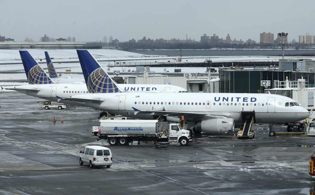 A dog died on a United Airlines plane Monday night after a flight attendant ordered its owner to put the animal in the plane's overhead bin. United said Tuesday that it took full responsibility for the incident