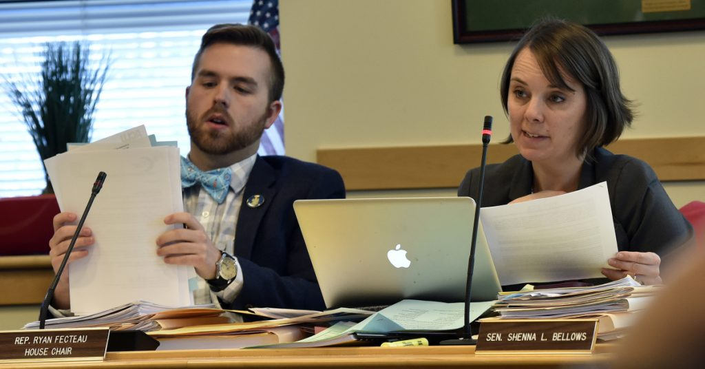 Joint Legislative Committee members House Chair Rep. Ryan Fecteau and Sen. Shenna Bellows hold a hearing in Augusta in February.