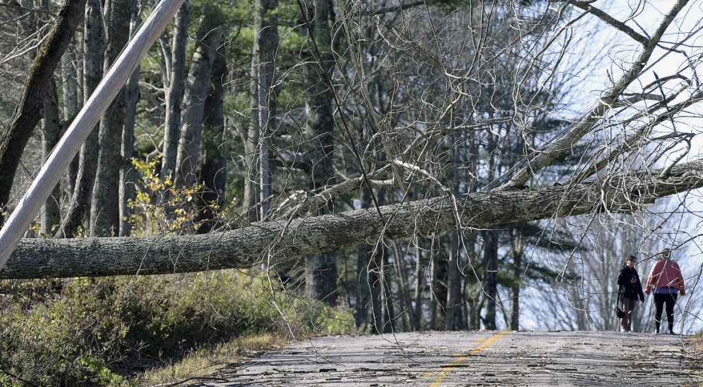 Residents survey a tree that toppled across the road in Litchfield last October 31 during a storm that knocked out power to hundreds of thousands of people across Maine.