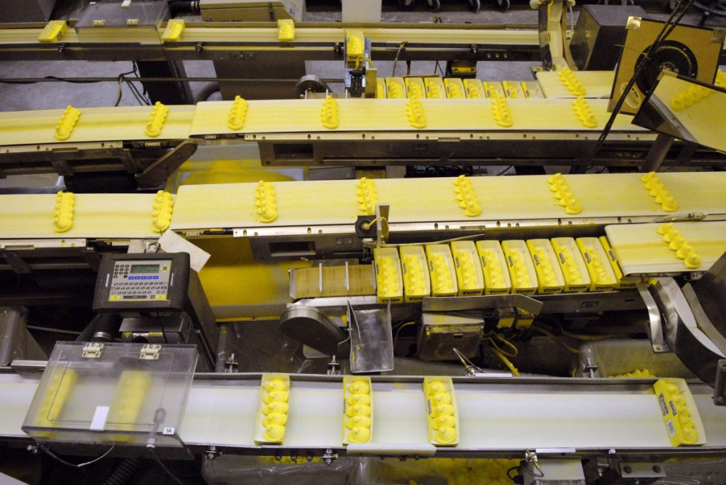 Peeps chicks move down a conveyor belt to be boxed and shipped at the Just Born plant in Bethlehem, Pa. MUST CREDIT: