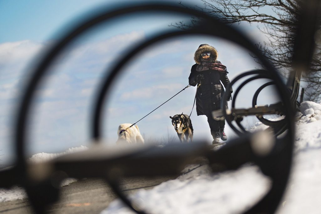 With a brisk, cold breeze off the water, Janet Raffeln of Portland is bundled up while walking her dogs along the Eastern Prom in Portland on March 16, 2018.