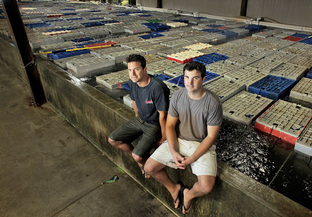 Brothers Brendan Ready, left, and John Ready are co-owners of Ready Seafood, which may be the first Maine lobster dealer to help fund a public university's research on the fishery.
